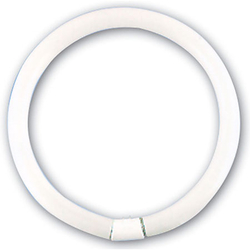 Ersatz-Ring-Leuchtstoffröhre 22 W